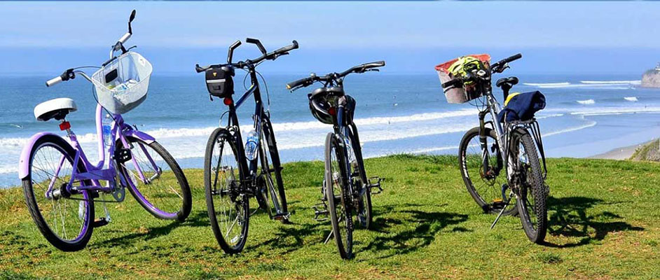 mission bay tour - Scenic Cycle Tours - San Diego Bike Tours