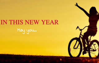 happy new year - Scenic Cycle Tours - San Diego Bike Tours