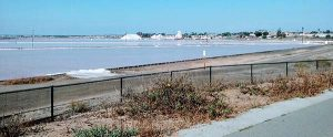 salt mines - Scenic Cycle Tours - San Diego Bike Tours
