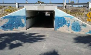 coronado bike tunnel - San Diego Bike Tours - Scenic Cycle Tours