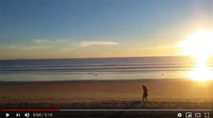 music of the ocean - San Diego Scenic Cycle Tours