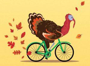 turkey riding a bike art - San Diego Scenic Cycle Tours