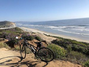 torrey pines beach - San Diego Scenic Cycle Tours