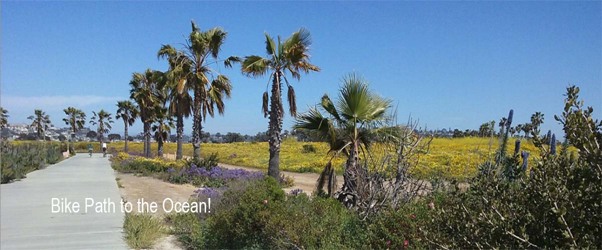 mission bay bike path - San Diego Scenic Cycle Tours