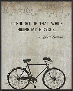 albert einstein - San Diego Scenic Cycle Tours
