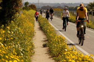 marina del rey - San Diego Scenic Cycle Tours