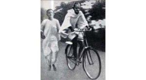 Gandhi - San Diego Scenic Cycle Tours