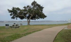 mission bay fall - San Diego Scenic Cycle Tours