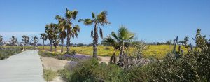 mission bay south shores bike bath - San Diego Scenic Cycle Tours